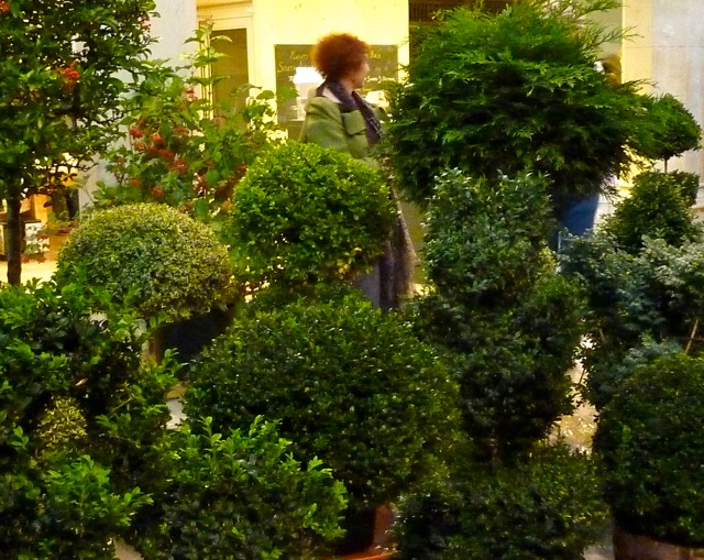 2010 Topiary Weekend at The Garden Museum