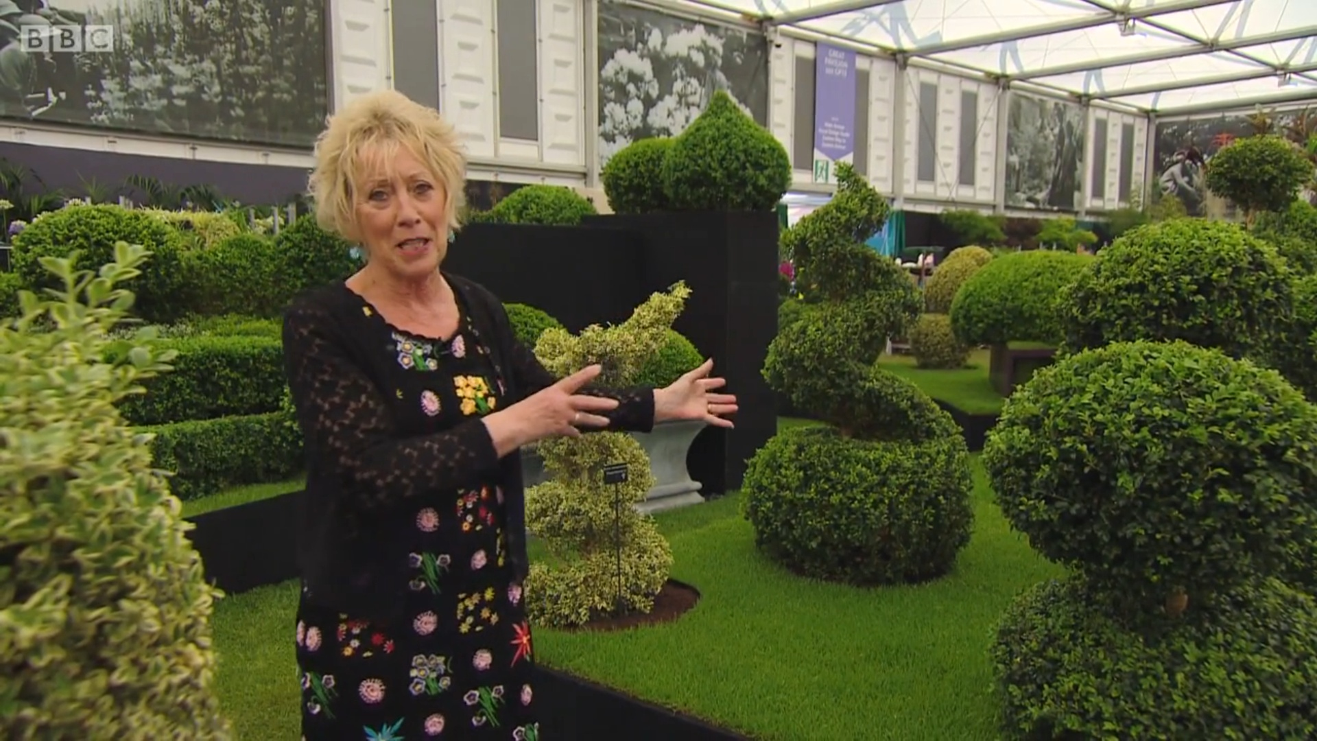 """Carol Klien on the BBC's live coverage described the Topiary Arts display as having """"Pure drama & absolute impact"""""""