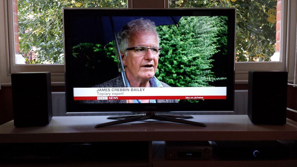 BBC Six O'clock News – Box Tree Caterpillars