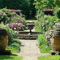 20150704 Newby Hall rose garden
