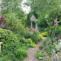 20150705 The Old Vicarage back garden walk
