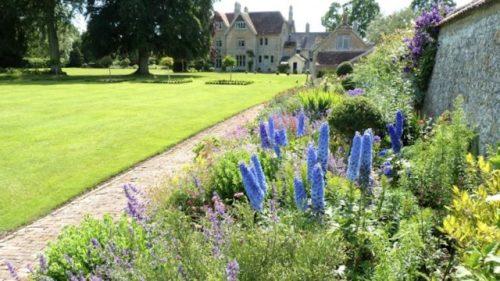 Gardens in Dorset
