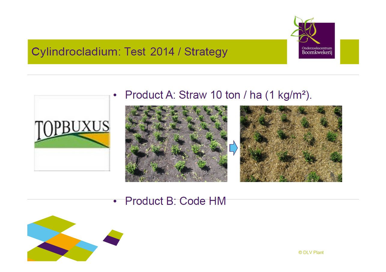 2014 Topbuxus DLV Results 2