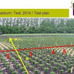 2014 Topbuxus DLV Results 3HL