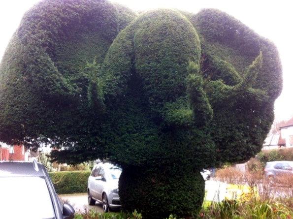 Amazing Front Garden Topiary