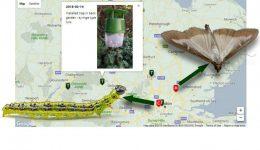 BMC Tracker HL