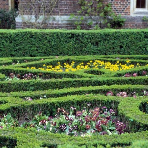 Hampton Court Surrey England - 5