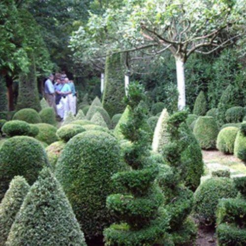 Jardin de Serincourt - Garden in Pas de Calais