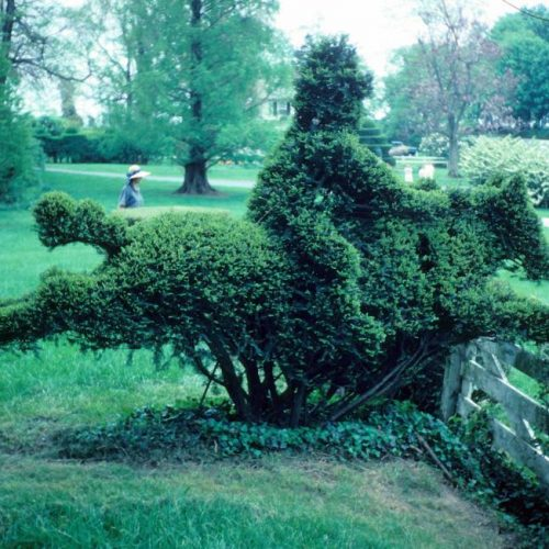 Ladew An outstanding topiary garden rare in the US is located near Baltimore Maryland - 6