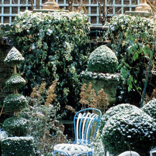 Noel - London garden designer noted for small gardens - 2