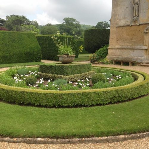 Sudeley Castle - Gloucestershire UK - June 2014 - Unusual two-colour Boxwood (Buxus sempervirens and Buxus sempervirens Elegantissima) circular hedging