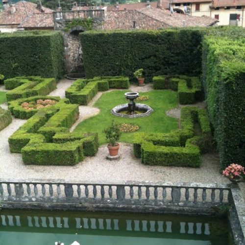 Villa Cicogna - Bisuschio - Italy - May 2014 - Boxwood (Buxus sempervirens) parterre in the course of restoration