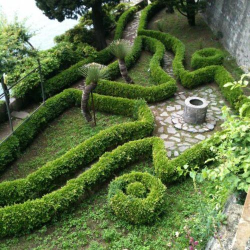 Villa Monastero - Varenna - Lake Como - Italy - May 2014 - Myrtle (Myrtus communis) hedging as an alternative to Boxwood