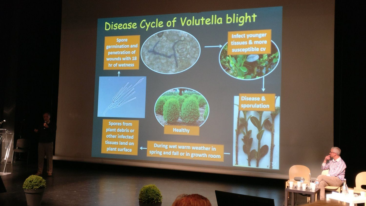 Tom Hsiang explaining the disease cycle of Volutella blight