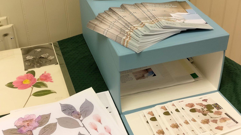 IMG_20181106_130917-RHS Herbarium HL