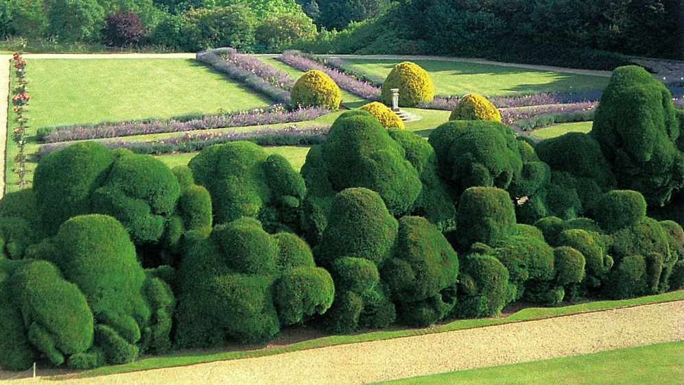 Rockingham Castle's elephant hedge