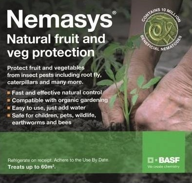 RHS Testing of Nematodes for BASF