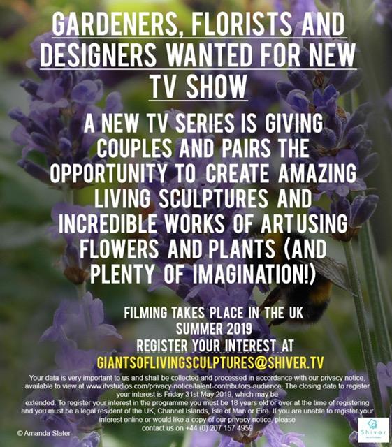 R U Creative & Want 2 B on TV?