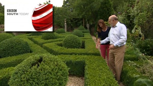 BBC South Today - Bruce Ginsbergs garden - HL