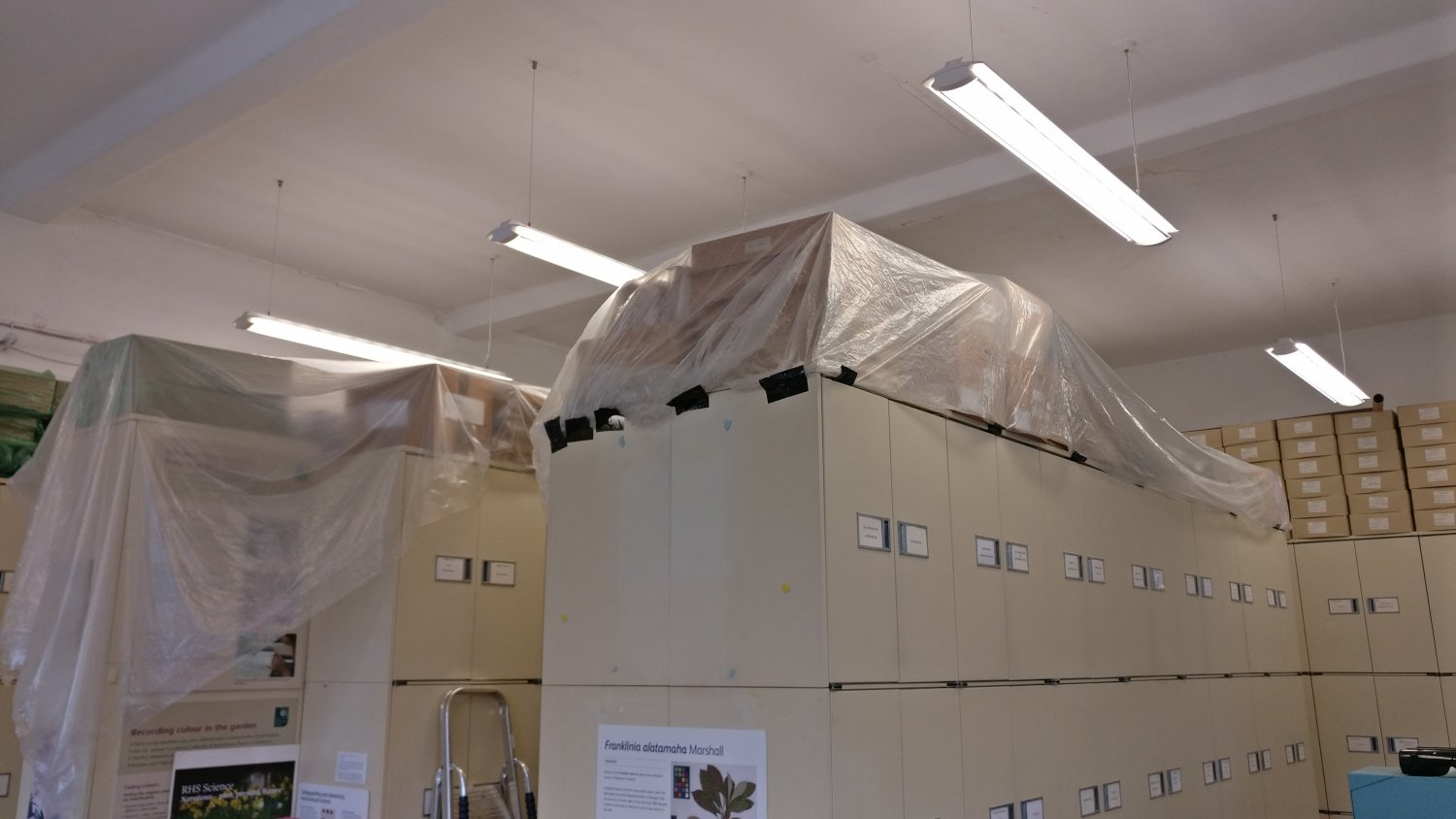 Current storage of herbarium samples at RHS Wisley