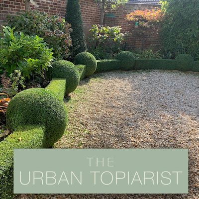 The Urban Topiarist composite image SQ