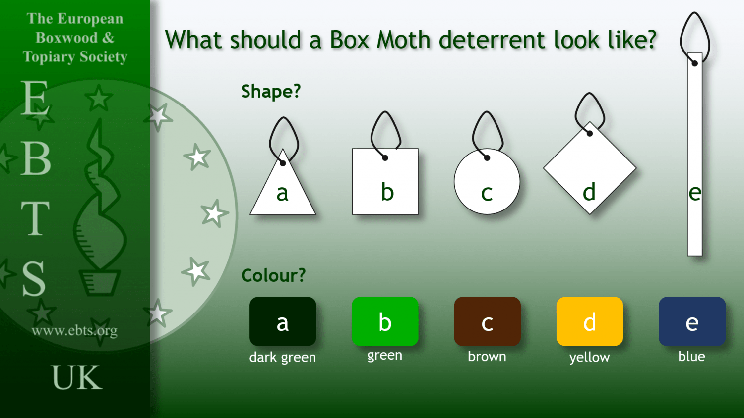 What should a Box Moth deterrent look like?