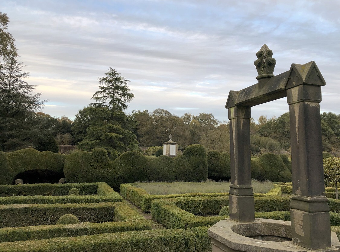 Buxus Parterre in need of clipping & reshaping (an idea of the size of the Spanish Garden)
