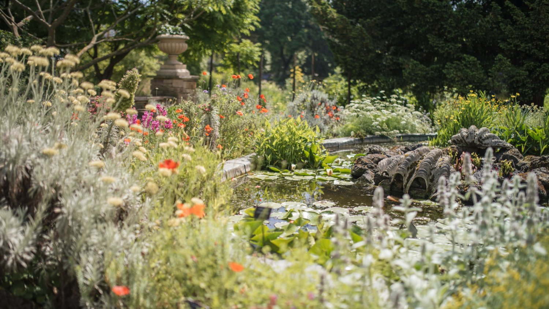 Chelsea Physic Garden - Photo by Laura Stoner-New HL