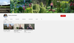 Bunny Guinness YouTube Channel HL