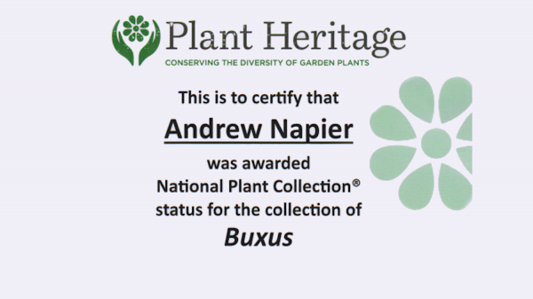 2020-03-10 National Plant Collection Buxus Certificate HL