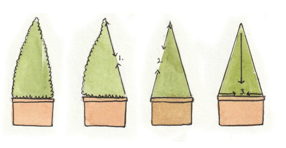 Clipping a cone
