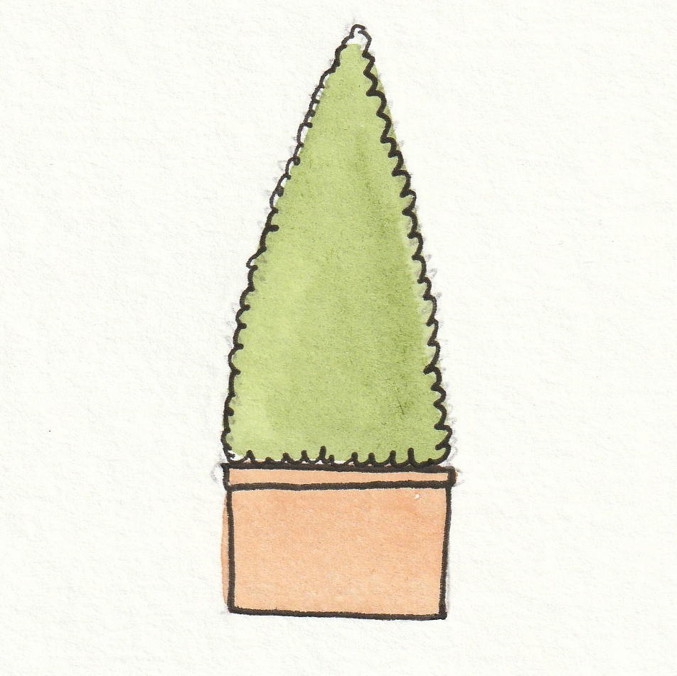 Choose a plant that is roughly conical in shape, there's no point making your life difficult!
