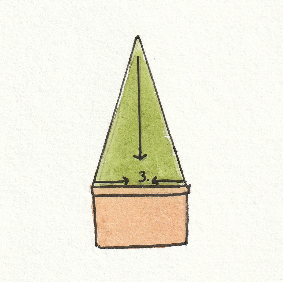 Now clip the area between the two lines keeping the same angle and that's it, you've created topiary a cone
