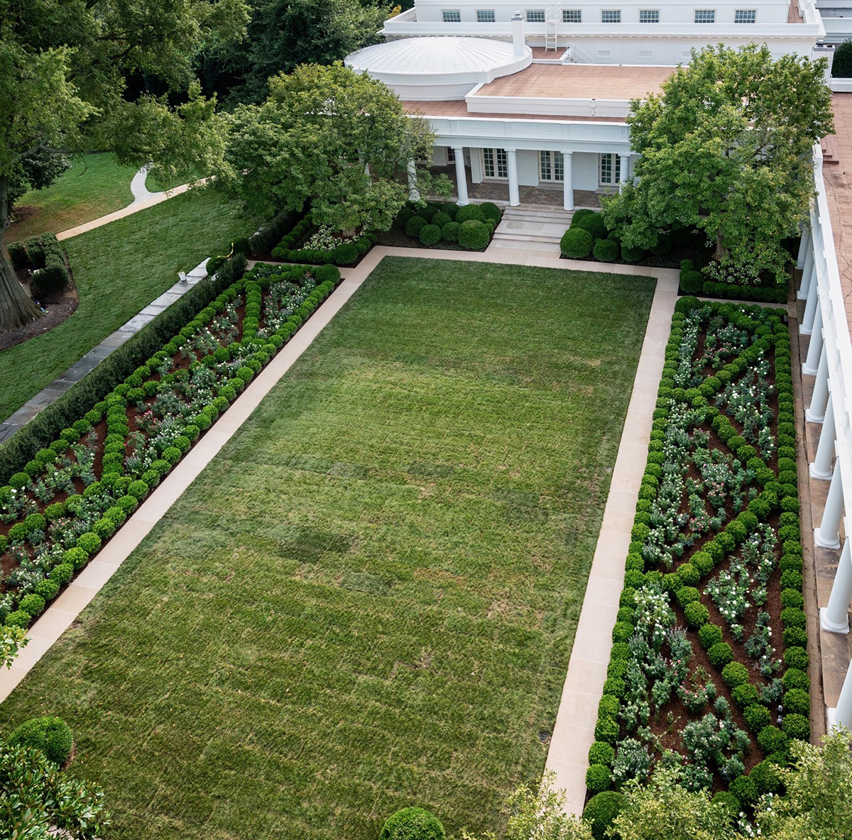 Bird's-eye view of the renovated White House Rose Garden with NewGen Independence® boxwood parterre hedges and 'Green Beauty' boxwood 'cloud effect' podium plantingsPhoto by White House Photo Office
